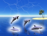 Digital Art - Landscapes - Dolphins Redox