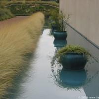 Photo - Places - Garden