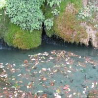 Photo - Places - Italian Fountain