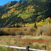 Photo - Places - Seasons Change Aspen