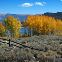 Photo - Places - Fire and Ice Aspen Fall