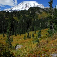 Photo - Places - Mt Rainier